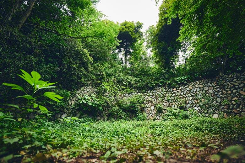 コース1 古代の石垣